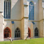 Dom Zeitz: Zeitzer Dom St. Peter und Paul